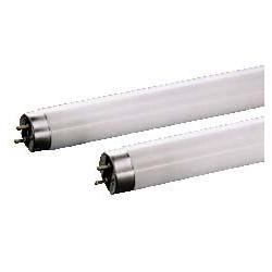 Tube fluo néon 60cm 18w 26mm