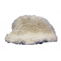 produits moquette shampooings d tachant injection extraction. Black Bedroom Furniture Sets. Home Design Ideas